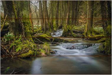 Chlébské údolí A - 40x60 - dřevo