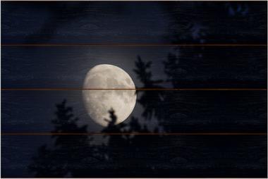 Měsíc B - 40x60 - dřevo