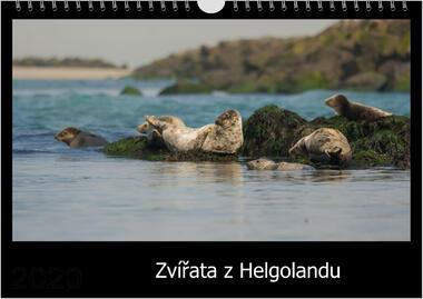 Kalendář A3 Zvířata z Helgolandu 2021 C