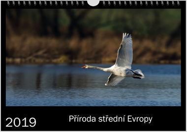 Kalendář A4 Příroda střední Evropy 2019 B