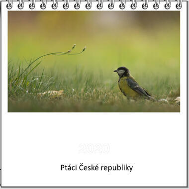 Kalendář stolní Ptáci České republiky 2021 A