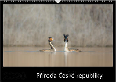 Kalendář A4 Příroda České republiky 2021 E