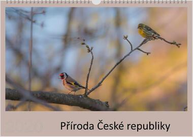 Kalendář A3 Příroda České republiky 2021 D