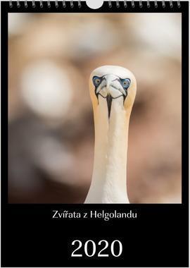 Kalendář A3 Zvířata z Helgolandu 2020 E