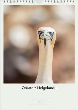 Kalendář A4 Zvířata z Helgolandu 2021 F