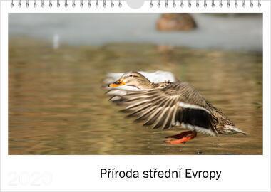Kalendář A4 Příroda střední Evropy 2021 E