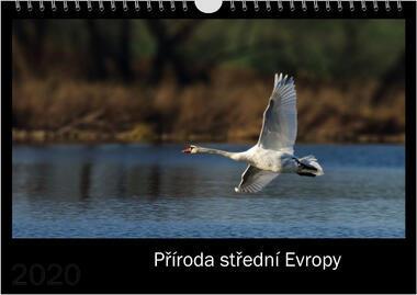 Kalendář A3 Příroda střední Evropy 2021 B