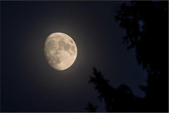 Měsíc A - 40x60 - plátno
