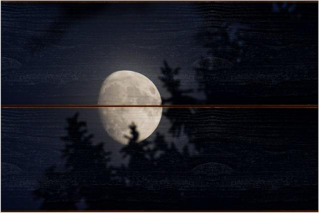 Měsíc B - 20x30 - dřevo