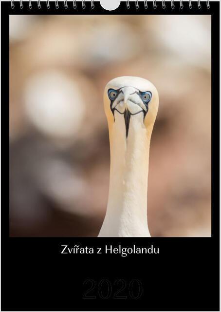 Kalendář A4 Zvířata z Helgolandu 2022 E