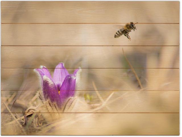 Včela medonosná B - 60x80 - dřevo